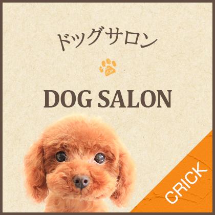 dogsalon_half_banner