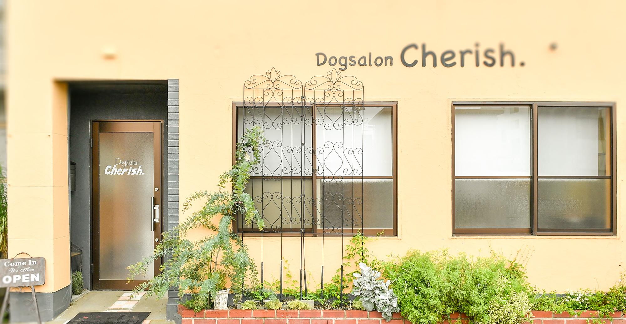 Dogsalon Cherish.